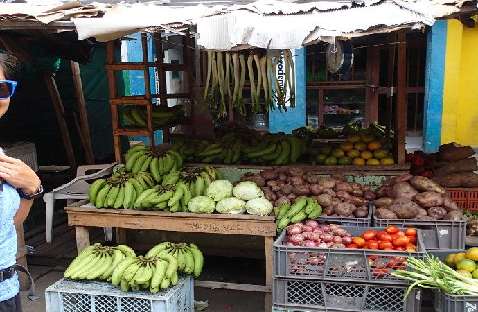 Vegetable Vendor Colombia