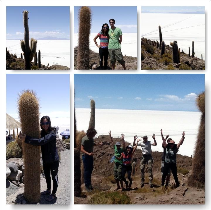 Uyuni Bolivia Salt Flats Cactus Island